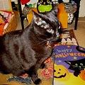 Photos: Ekkun_HalloweenMat-2011
