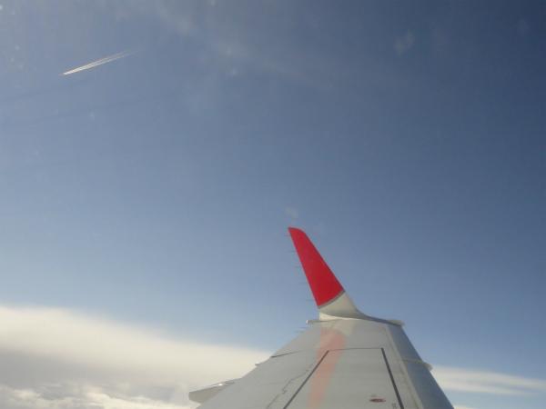 眩しい青空に飛行機雲が見える