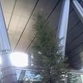 Photos: 渋谷南平台なう